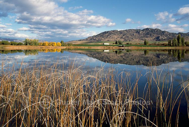Deadman Lake near Osoyoos, BC, South Okanagan Valley, British Columbia, Canada, Autumn / Fall