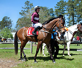 04/01/2017 - Carolina Cup Races
