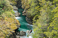 Snowing at Fish River near Haast Pass, Mt. Aspiring National Park, Central Otago, UNESCO World Heritage Area, New Zealand, NZ