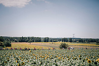 sunflower passage<br /> <br /> 104th Tour de France 2017<br /> Stage 14 - Blagnac › Rodez (181km)