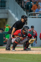 Indianapolis Indians catcher Elias Diaz (29) sets a target as home plate umpire Matt McCoy looks on during the game against the Charlotte Knights at BB&T BallPark on June 20, 2015 in Charlotte, North Carolina.  The Knights defeated the Indians 6-5 in 12 innings.  (Brian Westerholt/Four Seam Images)
