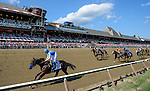 SARATOGA SPRINGS, NY - AUGUST 27: Drefong #13, ridden by Mike Smith wins the Kings Bishop Stakes on Travers Stakes Day at Saratoga Race Course on August 27, 2016 in Saratoga Springs, New York. (Photo by Bob Mayberger/Eclipse Sportswire/Getty Images)