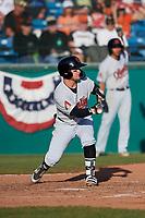 Visalia Rawhide second baseman Camden Duzenack (1) shows bunt during a California League game against the San Jose Giants on April 13, 2019 at San Jose Municipal Stadium in San Jose, California. Visalia defeated San Jose 4-2. (Zachary Lucy/Four Seam Images)