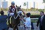 HALLANDALE BEACH, FL - JANUARY 21: #4 Our Way (FL) with jockey John Velazquez on board, heads to the Winners' Circle after his win of the Sunshine Millions Turf Stakes at Gulfstream Park on January 21, 2017 in Hallandale Beach, Florida. (Photo by Liz Lamont/Eclipse Sportswire/Getty Images)