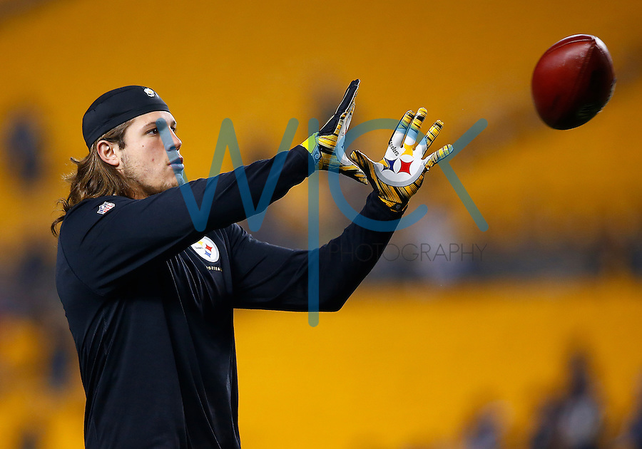 Anthony Chickillo #40 of the Pittsburgh Steelers in action against the Indianapolis Colts during the game at Heinz Field on December 6, 2015 in Pittsburgh, Pennsylvania. (Photo by Jared Wickerham/DKPittsburghSports)