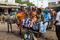 Senegal, Touba.  Horse-drawn Carts Provide Taxi Service for Market Shoppers.