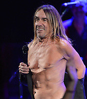 MIAMI BEACH, FL - APRIL 19: Iggy Pop rocks his Man Boobs at the Fillmore Miami Beach two days before his 69th Birthday. James Newell Osterberg, Jr., better known by the stage name Iggy Pop, is an American singer-songwriter, musician and actor who's birthday is on April 21, 1947 (age 68)  on April 19, 2016 in Miam Beach, Florida.<br /> <br /> <br /> People:  Iggy Pop<br /> <br /> Transmission Ref:  FLXX<br /> <br /> Must call if interested<br /> Michael Storms<br /> Storms Media Group Inc.<br /> 305-632-3400 - Cell<br /> 305-513-5783 - Fax<br /> MikeStorm@aol.com<br /> www.StormsMediaGroup.com