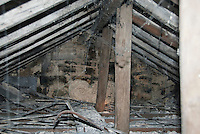 Large wasps' nest in the attic of a house.