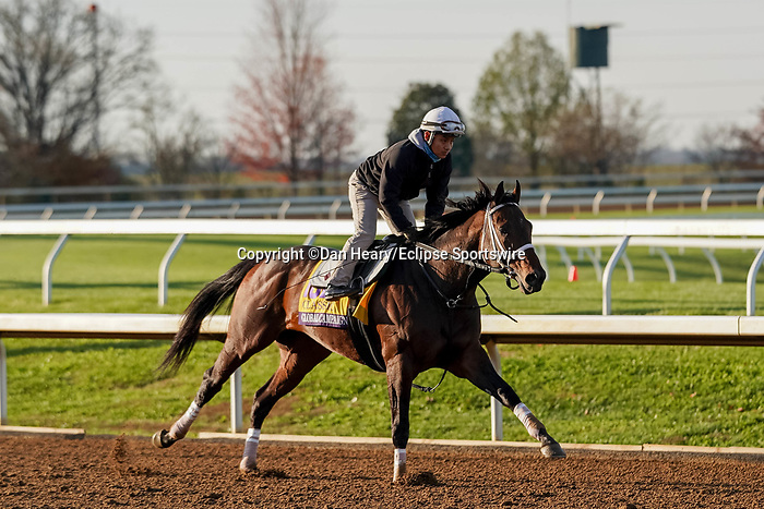 November 5, 2020: Global Campaign, trained by trainer Stanley M. Hough, exercises in preparation for the Breeders' Cup Classic at Keeneland Racetrack in Lexington, Kentucky on November 5, 2020. Dan Heary/Eclipse Sportswire/Breeders Cup/CSM