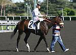 27 March 2010: Tanda and Alex Solis win the Santa Paula Stakes at Santa Anita Park in Arcadia, CA..