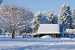 Idaho, Dalton Gardens, Coeur d' Alene. Horses stand by a stable in a snowy landscape on a small farm.