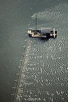 Europe/France/Pays de la Loire/49/Maine-et-Loire/Le Thoureil: Pêche au saumon sur la Loire vue aérienne