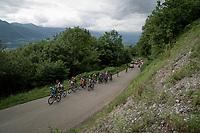 race leaders coming up<br /> <br /> Stage 7: Saint-Genix-les-Villages to Pipay  (133km)<br /> 71st Critérium du Dauphiné 2019 (2.UWT)<br /> <br /> ©kramon