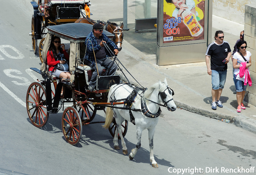 Pferdekutsche in Valletta, Malta, Europa