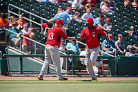 Springfield Cardinals infielder Elehuris Montero (43) is congratulated by manager Joe Kruzel (13) while rounding third after hitting a home run on May 19, 2019, at Arvest Ballpark in Springdale, Arkansas. (Jason Ivester/Four Seam Images)
