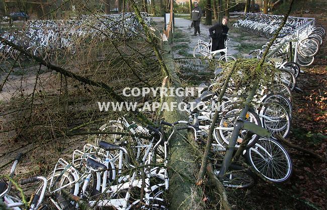 Hoge Veluwe, 190107<br /> Ook nationaal park de hoge Veluwe heeft schade opgelopen door de storm van gisteren. Zo zij er een drietal kunstwerken van Kroller Muller  beschadigd, op de foto de Needletower van Snelson die ook in de najaarsstorm van 2002 niet overeind bleef staan. Een bezoeker maakt er een foto van. Ook is er een boom gevallen op een aantal 'Witte fietsen'. Deze staan bij de ingang van het park en mogen door bezoekers gebruikt worden om door het park te rijden.<br /> Foto: Sjef Prins - APA Foto