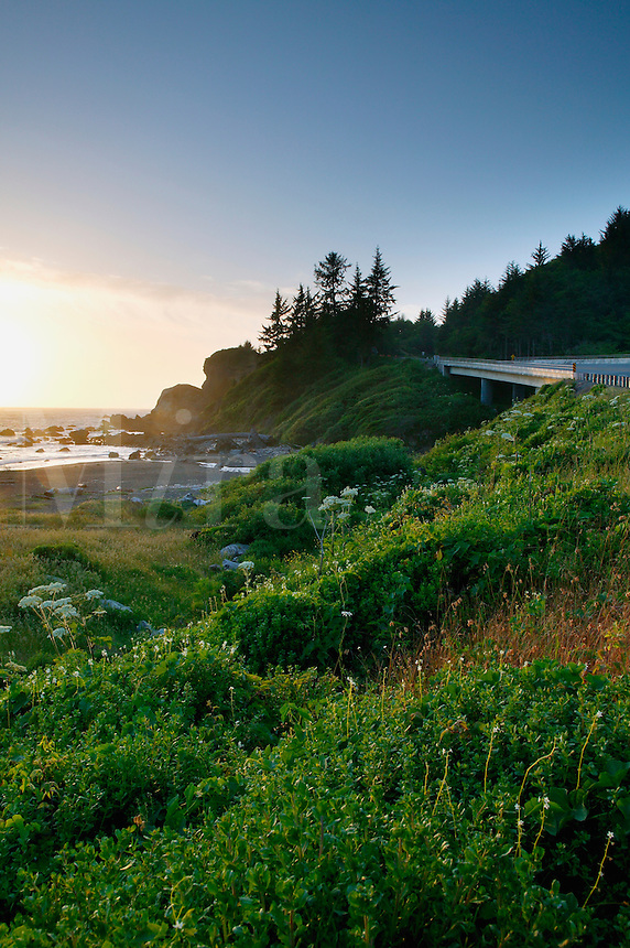 The Redwood Highway, or Highway 101 passes by False Klamath Cove and Wilson Creek, Del Norte Coast Redwoods State Park, Redwoods State and National Parks, California