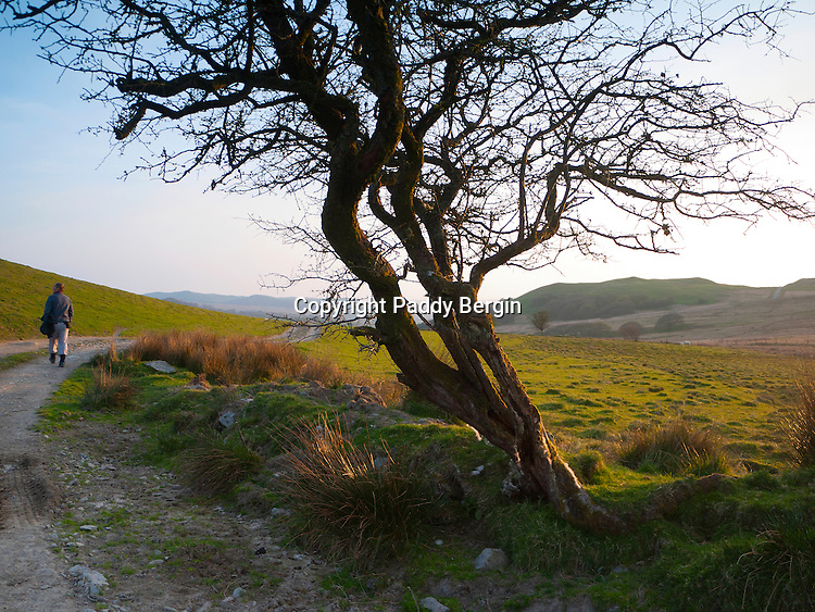 Penn y Bannau is a strongly sited hillfort whose rocky summit reaches 352m. It occupies a precipitous crag aligned NE/SW at the western end of an upland ... near to Ffair-Rhos, Ceredigion, West Wales and is an Iron Age Hillfort.<br /> <br /> On the way up we passed what looked like a race track, The fort is in a really good place and the views are quite extensive.<br /> <br /> Stock Photo by Paddy Bergin
