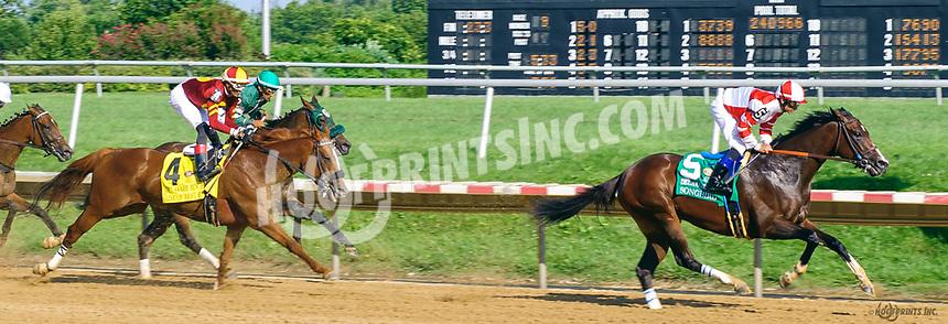 Songbird winning The grade 1 Delaware Handicap at Delaware Park on 7/15/17