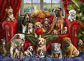 Marcello, REALISTIC ANIMALS, REALISTISCHE TIERE, ANIMALES REALISTICOS, paintings+++++,ITMCEDC1128AB,#a#, EVERYDAY ,puzzle,puzzles