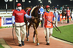 March 27 2021: MYSTIC GUIDE #10, in the post parade for the Dubai World Cup at Meydan Racecourse, Dubai, UAE. Shamela Hanley/Eclipse Sportswire/CSM
