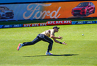 NZ's Tim Southee tries to catch Aaron Finch's boundary shot during the 5th international men's T20 cricket match between the New Zealand Black Caps and Australia at Sky Stadium in Wellington, New Zealand on Sunday, 7 March 2021. Photo: Dave Lintott / lintottphoto.co.nz