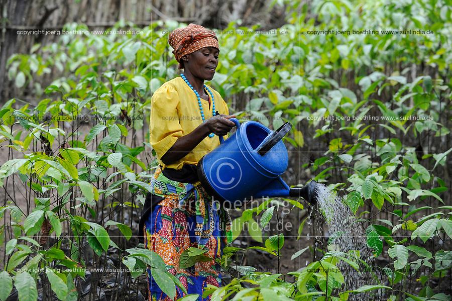 Afrika ANGOLA Calulo, Frau bewaessert Kaffeesetzlinge auf einer Farm - Africa ANGOLA Calulo, woman waters coffee seedlings at farm
