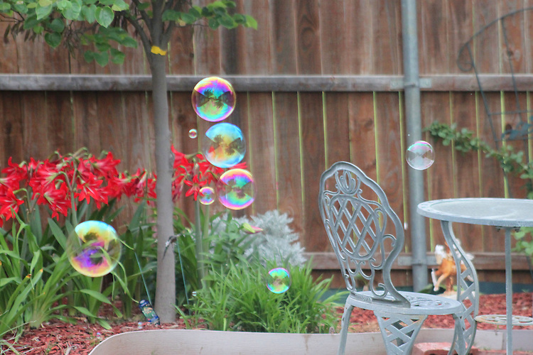bubbles in the air