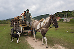 A man and his children transport a load of wooden palettes on a horse-drawn cart in Imbituba, Santa Catarina, Brazil