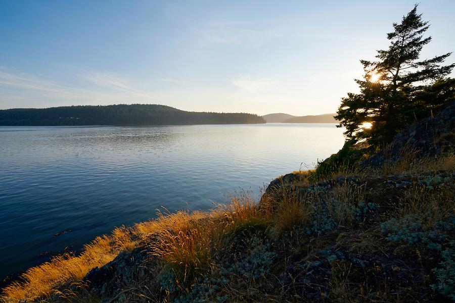 Grassy meadow on rocky coast overlooking Skagit Bay, Skagit Island Marine State Park, Skagit County, Washington State, USA