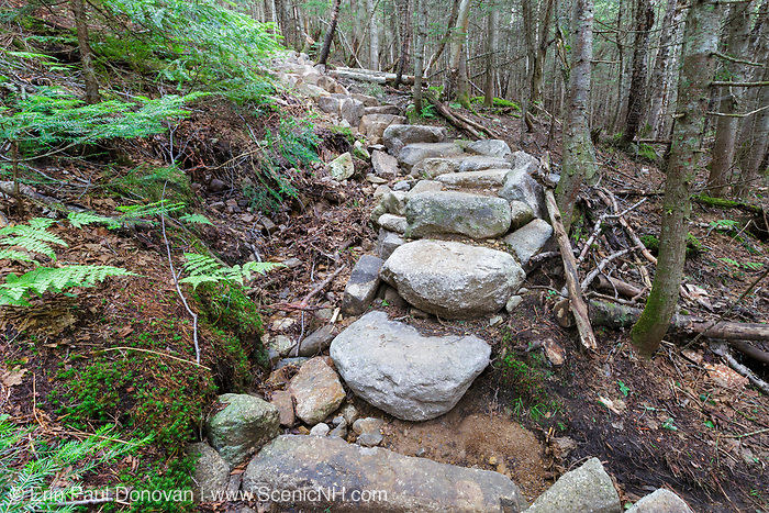 Hillside erosion (and the first step is being undermined) next to stone steps along the Mt Tecumseh Trail in Waterville Valley, New Hampshire in July 2015. The impact on the left side is from the building of the stairs. When this image was taken, this staircase was only a year or two old.