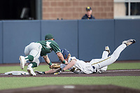 Michigan State Spartans third baseman Marty Bechina (2) tags out Michigan Wolverines baserunner Miles Lewis (3) during the NCAA baseball game on April 18, 2017 at Ray Fisher Stadium in Ann Arbor, Michigan. Michigan defeated Michigan State 12-4. (Andrew Woolley/Four Seam Images)
