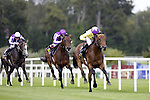 September 05, 2009: Trainer John Oxx's Sea The Stars and ridden by Mick Kinane winThe Tattersalls Millions Irish Champion Stakes from Fame and Glory in second and Mastercraftsman in third. Leopardstown Racecourse, Dublin, Ireland.