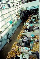Coatzacalos , Mexico- January - 1993  File Photo -