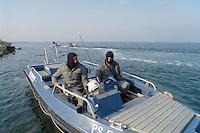 - police patrol against unauthorized fishermen of clams in the  Scardovari Lagoon (Po river delta)....- pattuglia della polizia contro i pescatori abusivi di vongole  nella Sacca di Scardovari (delta fiume Po)