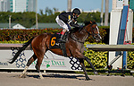January 23, 2021: Pacific Gate, #6, ridden by jockey John R. Velazquez wins the Inside Information Stakes during Pegasus World Cup Invitational Day at Gulfstream Park in Hallandale Beach, Florida. Scott Serio/Eclipse Sportswire/CSM