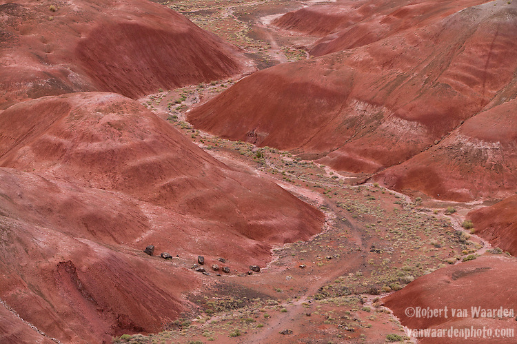 The Painted Desert in Petrified Forest national park.