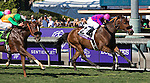 ARCADIA, CA - NOVEMBER 05: Obviously #2, ridden by Flavien Prat wins the Breeders' Cup Turf Sprint during day two of the 2016 Breeders' Cup World Championships at Santa Anita Park on November 5, 2016 in Arcadia, California. (Photo by Jesse Caris/Eclipse Sportswire/Breeders Cup)