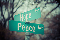 Hope Brings Peace