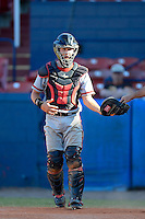 University of Missouri - St Louis Tritons catcher Paul Richmond #28 during a game against the Wayne State Wildcats at Chain of Lakes Stadium on March 8, 2013 in Winter Haven, Florida.  Wayne State defeated UMSL 3-2 in fourteen innings.  (Mike Janes/Four Seam Images)