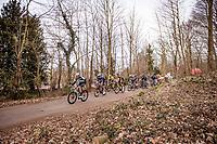 Leading bunch up the Baneberg<br /> <br /> 83rd Gent-Wevelgem - in Flanders Fields (ME - 1.UWT)<br /> 1 day race from Ieper to Wevelgem (BEL): 254km<br /> <br /> ©kramon