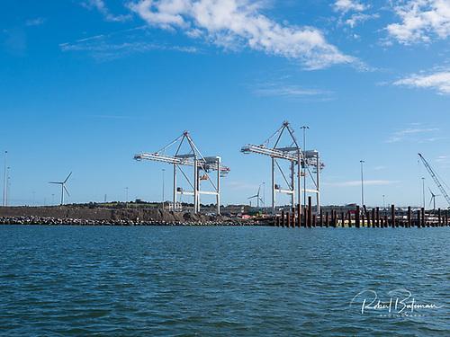 Post Panamax Port of Cork Cranes