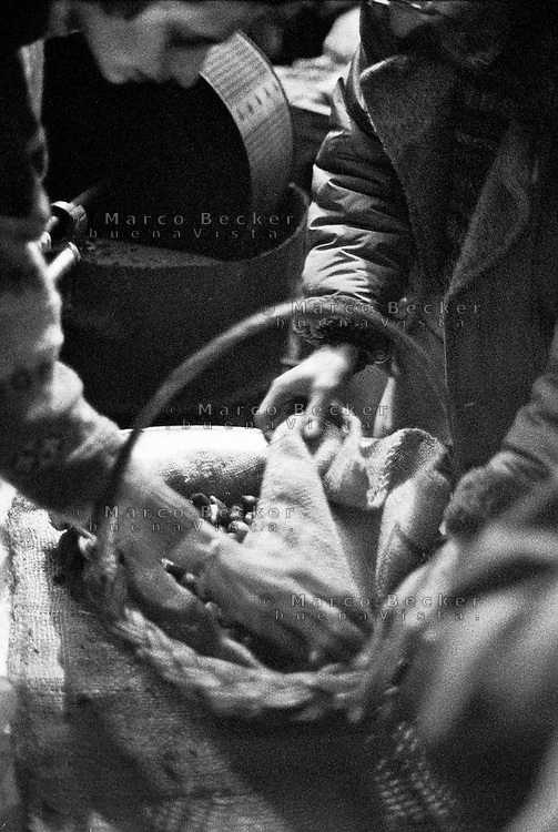 Milano, quartiere Sant'Ambrogio. Fiera degli Oh Bej! Oh Bej!, tradizionale mercatino del periodo natalizio milanese. Una cesta di castagne per le caldarroste --- Milan, Sant'Ambrogio district. Oh Bej! Oh Bej!, traditional Milanese Christmas fair. A basket for roasted chestnuts