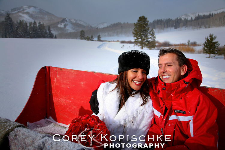 Bride and groom on a horse driven sleigh in Winter after wedding ceremony.