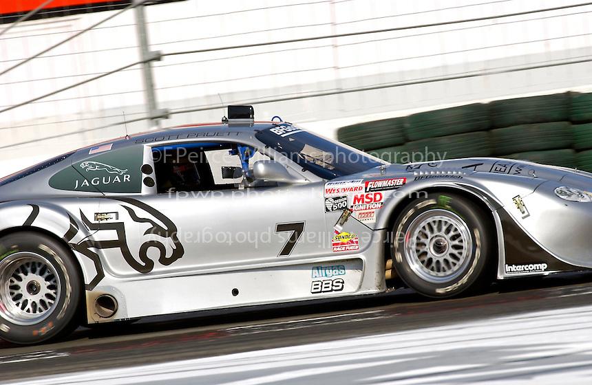 Scott Pruett  #7  Jaguar