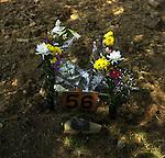 On May 11, 2011, earthquake of magnitude 9.0 and devastating tsunami hit the Tohoku area, killing more than 15,000 people and missing more than 5,000 people. A temporary mass grave for the victims of tsunami in Ishinomaki, Miyagi.