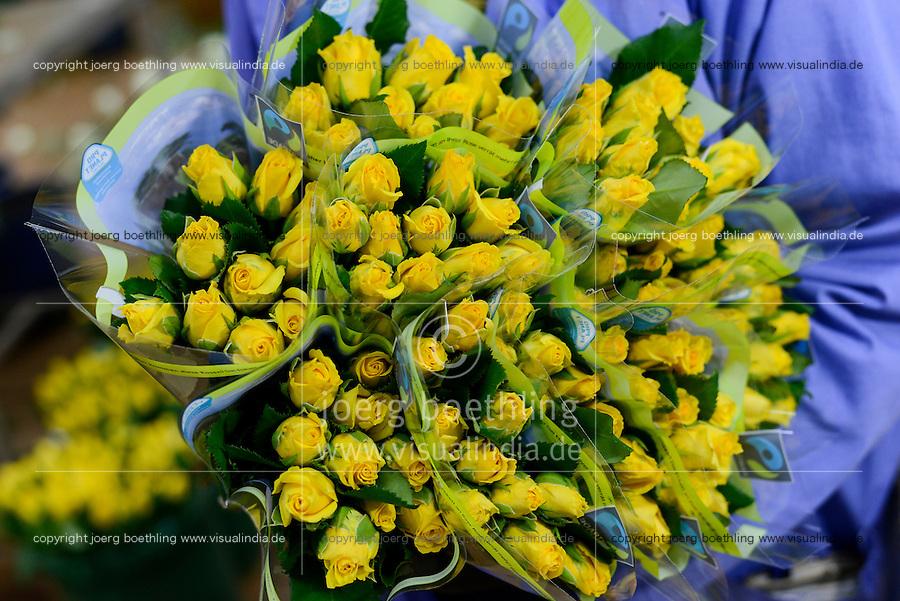 KENYA Thika near Nairobi, Simbi Roses is a fair trade rose flower farm which produces rose as cutting flowers for export to europe, packaging department / KENIA Thika bei Nairobi, Simbi Roses ist eine fairtrade zertifizierte Blumenfarm die Rosen fuer den Export nach Europa anbauen, Verpackung