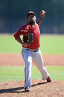 Arizona Diamondbacks pitcher Wagner Mateo (18) during an Instructional League game against the Chicago Cubs on October 5, 2013 at Salt River Fields at Talking Stick in Scottsdale, Arizona.  (Mike Janes/Four Seam Images)