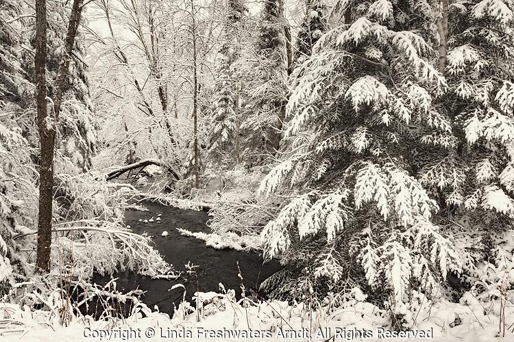 A creek running through a snowy northern Wisconsin woodland.