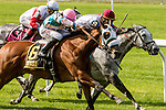 New York, NY - JULY 02: My Sweet Girl, #6  with Manuel Franco aboard wins the Perfect Sting Stakes at Belmont Park on July 02, 2016, in Elmont, NY. (Photo by Sue Kawczynski/Eclipse Sportswire/Getty Images)